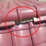 築20年瓦屋根の屋根点検! 屋根屋vsドローンvsホームインスペクターで比較しました!