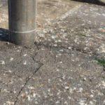 鳥害(糞尿)により、太陽光パネル表面が汚れると損するよ!