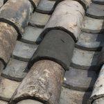 1400年前の瓦を見つめて来ました‼︎ 元興寺にて。