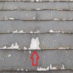 知らない人は損しているなぁと思う「パミール屋根」 はがれ・凍害のまとめ。