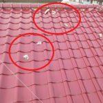 築30年の瓦屋根のしっくいの剥がれがありました!でも、葺き替えの必要はなく経済的ですよ!