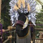 平成29年のおまんと祭り その1