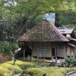 京都に紅葉を見に行ったよ! 一緒に、瓦を注目すると面白いかも?!