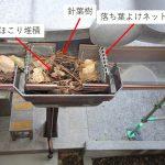 屋根点検したら、雨樋の落とし口に落ち葉詰まりを発見!