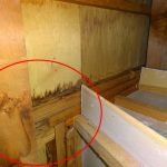 天窓からの雨漏り 天窓周辺の4つ角から雨漏りすることが多いです!