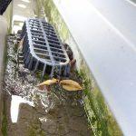 屋根点検していたら、雨樋の詰まりを発見しました!