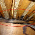 【雨漏り】角度が緩い屋根/金属屋根は雨漏りが酷かったです!