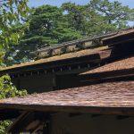 植物を使った屋根はどんなものがあるの?