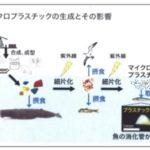 マイクロプラスチック問題と屋根の対策について