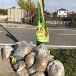 市民一斉清掃・街路樹ボランティアを地域の皆さんで行いましたよ (^o^)/