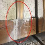 和風住宅・土壁からの雨漏り 外壁塗装しても止まりません!【愛知県刈谷市】