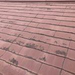 【初心者向け】屋根のリフォーム・修理方法とその費用相場を解説します!