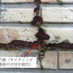 バルコニー内壁・サイディングの凍害 内壁も直貼りは危険【岐阜県中津川市】