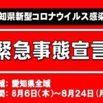 愛知県独自の緊急事態宣言が発出されました 8/6~24日まで不要不急な外出を控えないと・・・