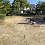 外淵公園清掃活動です 朝晩は涼しいので公園清掃も楽になりました