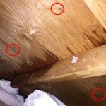 スレート屋根からの雨漏り くぎ穴からの漏水ではありません!