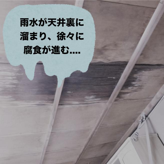 雨水が天井裏に溜まり、徐々に腐食が進む...