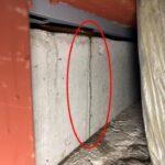 水切り板金からの雨漏り 散水調査して原因を特定し応急処置 【愛知県高浜市】