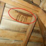 1階天井からの雨漏り 瓦屋根の雨漏り調査【愛知県日進市】